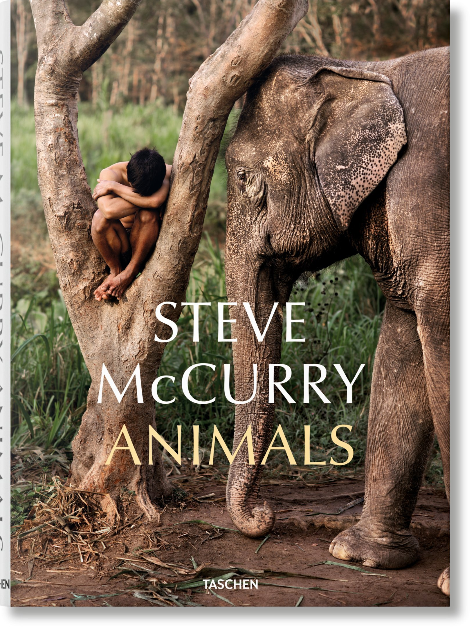 fo-mccurry_animals-cover_05349